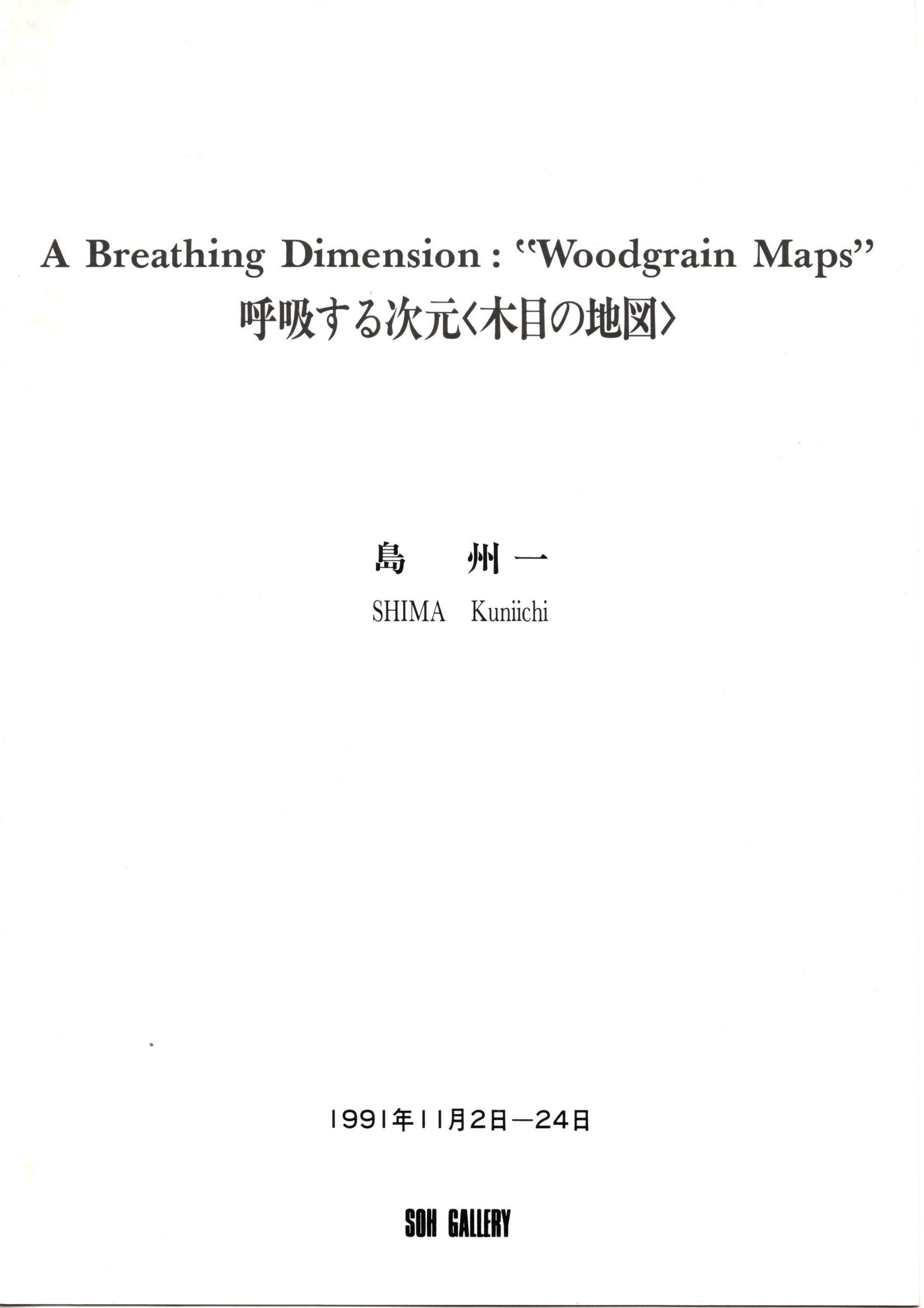 島州一展 呼吸する次元〈木目の地図〉